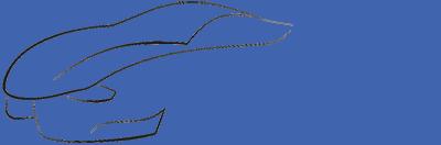 logo kwiatex